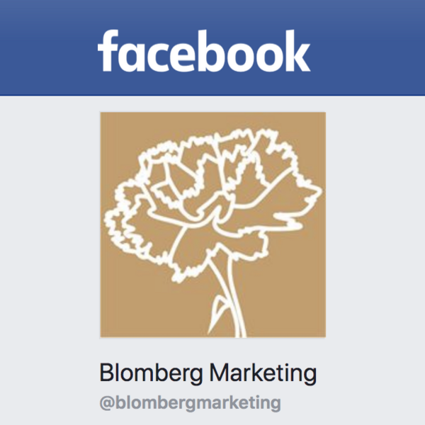 Blomberg Marketing e.V. bei Facebook